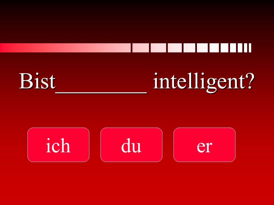Bist________ intelligent? ichduer