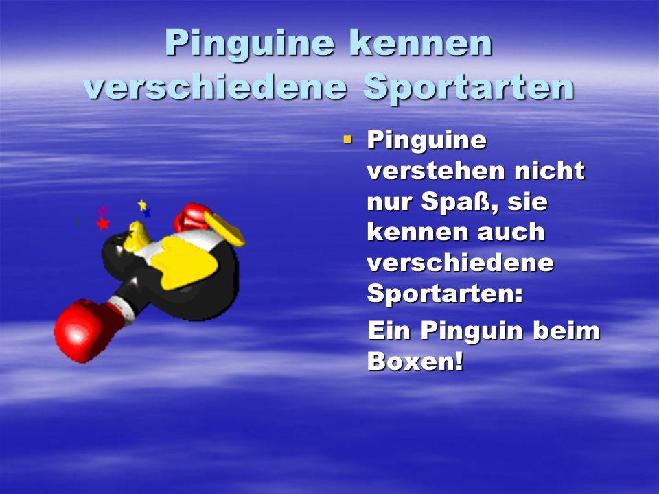 Pinguine kennen verschiedene Sportarten Pinguine verstehen nicht nur Spaß, sie kennen auch verschiedene Sportarten: Pinguine verstehen nicht nur Spaß,