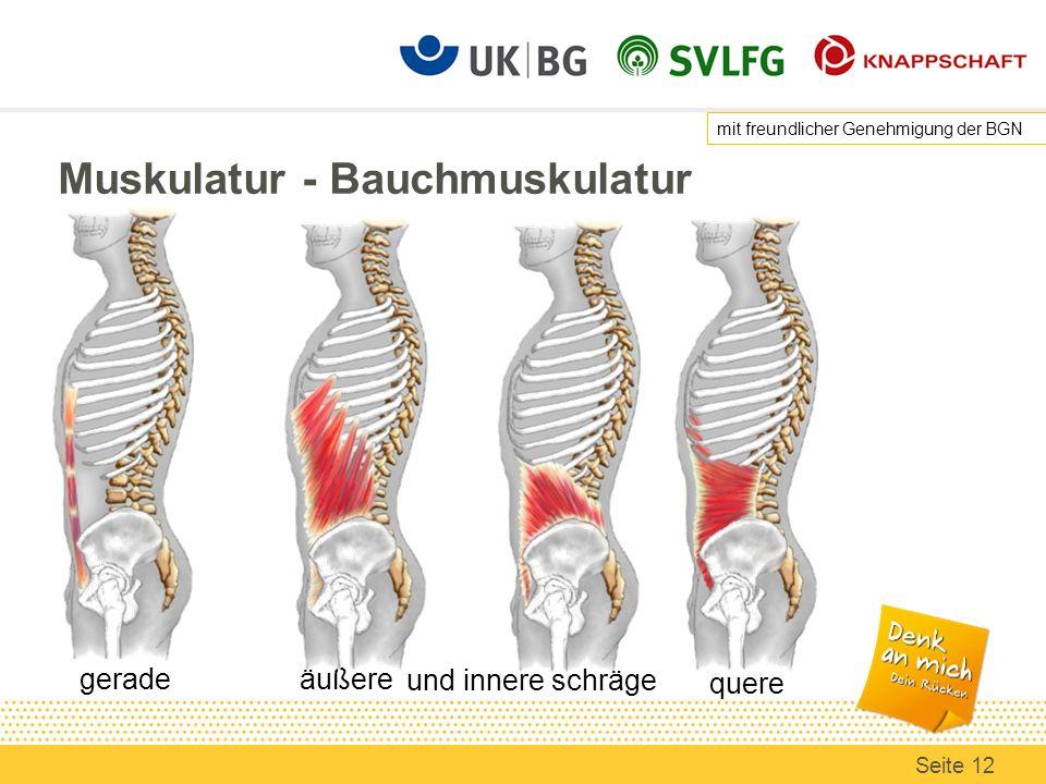 Muskulatur - Bauchmuskulatur gerade quere äußere und innere schräge mit freundlicher Genehmigung der BGN Seite 12