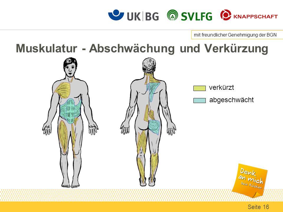 Muskulatur - Abschwächung und Verkürzung abgeschwächt verkürzt mit freundlicher Genehmigung der BGN Seite 16
