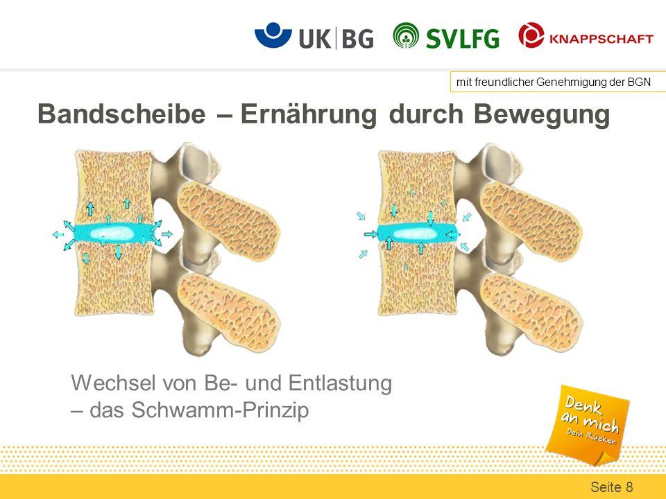 Bandscheibe – Ernährung durch Bewegung Wechsel von Be- und Entlastung – das Schwamm-Prinzip mit freundlicher Genehmigung der BGN Seite 8