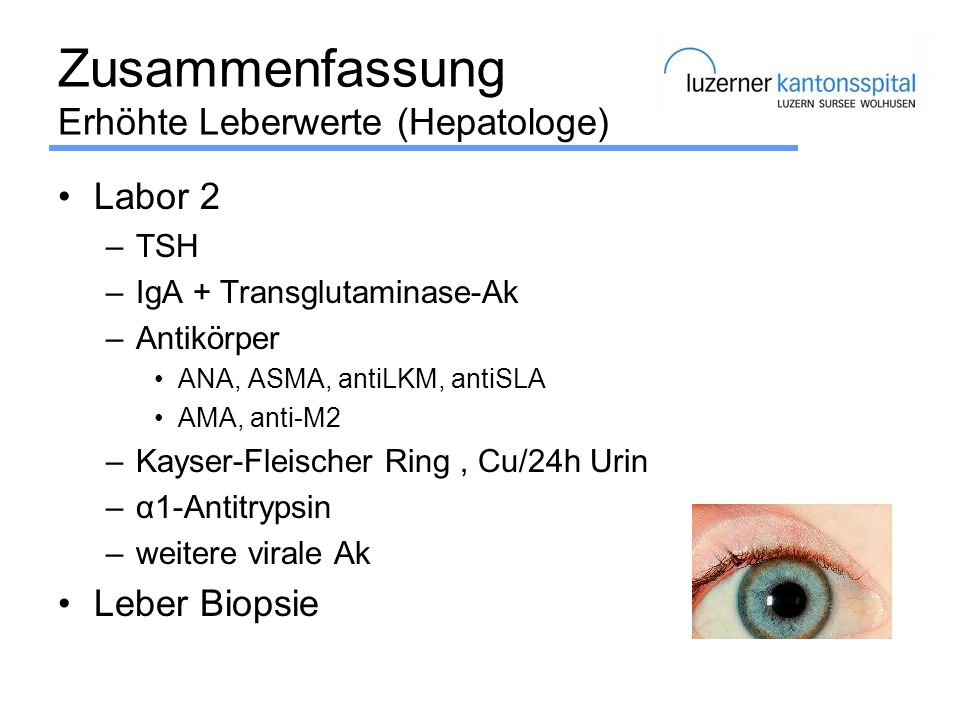Zusammenfassung Erhöhte Leberwerte (Hepatologe) Labor 2 –TSH –IgA + Transglutaminase-Ak –Antikörper ANA, ASMA, antiLKM, antiSLA AMA, anti-M2 –Kayser-F