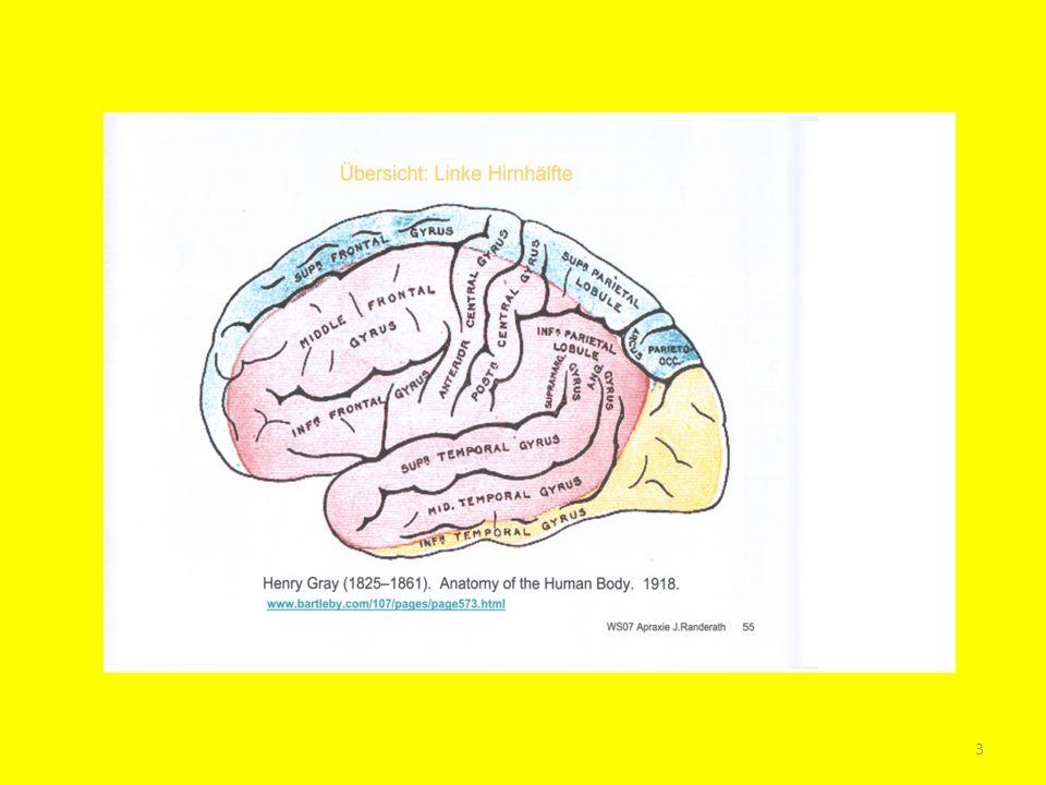 Häufigkeit: tritt recht häufig nach einer Schädigung in der linken Hirnhälfte (wie Schlaganfall) auf.