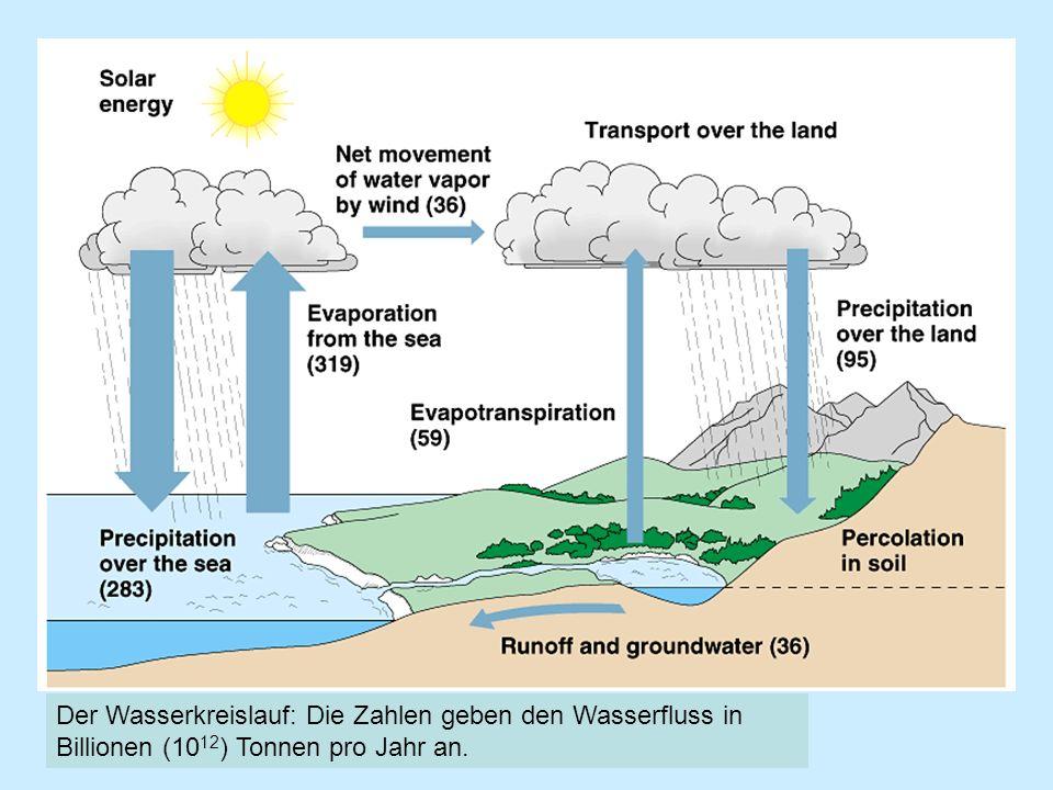 Der Wasserkreislauf: Die Zahlen geben den Wasserfluss in Billionen (10 12 ) Tonnen pro Jahr an.
