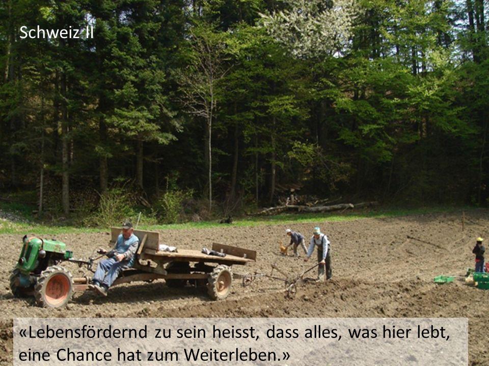 Schweiz II «Lebensfördernd zu sein heisst, dass alles, was hier lebt, eine Chance hat zum Weiterleben.»