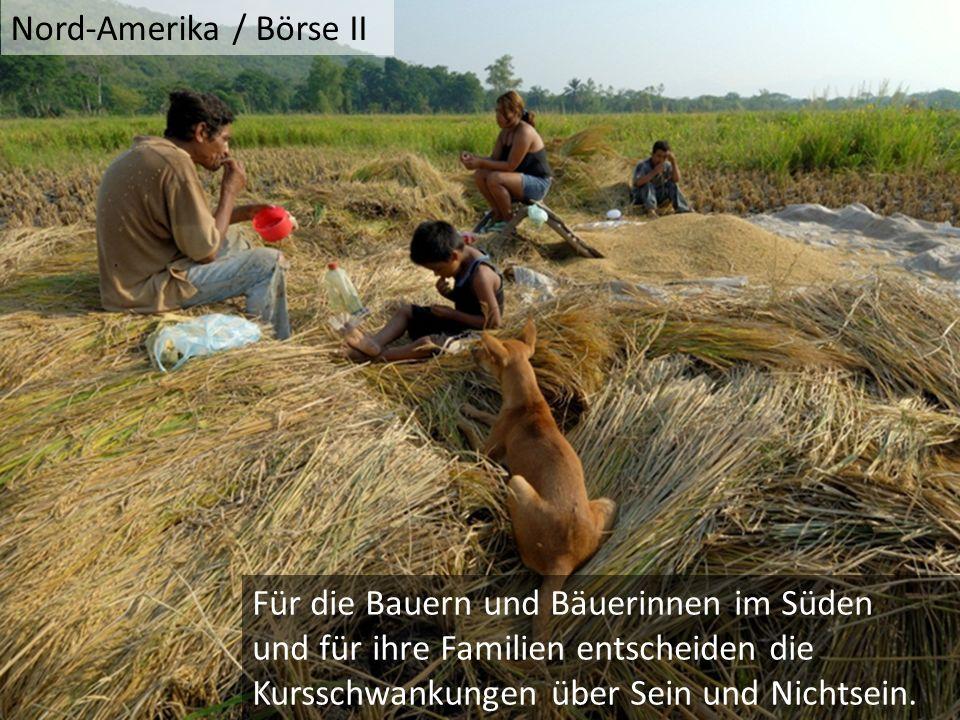 Für die Bauern und Bäuerinnen im Süden und für ihre Familien entscheiden die Kursschwankungen über Sein und Nichtsein.