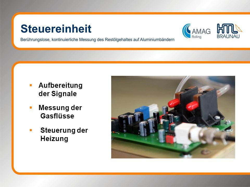 Steuereinheit Aufbereitung der Signale Messung der Gasflüsse Steuerung der Heizung