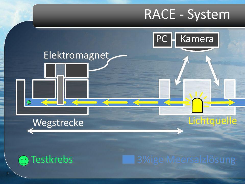 RACE - System 8 Kamera Elektromagnet Testkrebs Lichtquelle 3%ige Meersalzlösung PC Wegstrecke