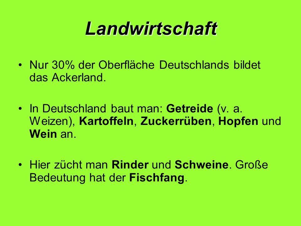 Landwirtschaft Nur 30% der Oberfläche Deutschlands bildet das Ackerland. In Deutschland baut man: Getreide (v. a. Weizen), Kartoffeln, Zuckerrüben, Ho