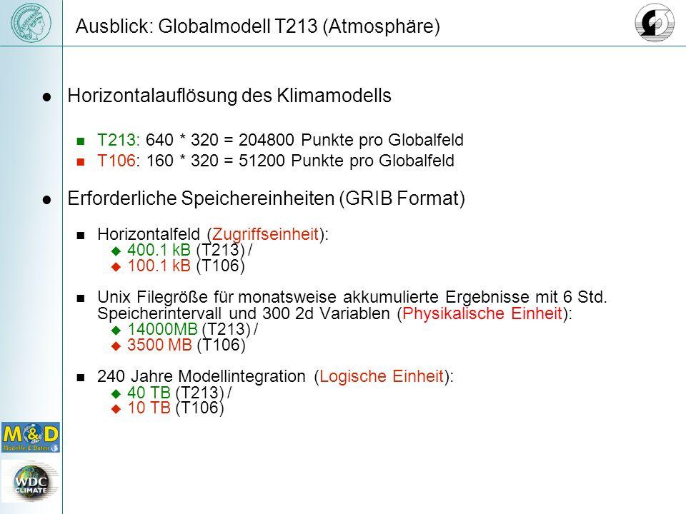 Ausblick: Globalmodell T213 (Atmosphäre) Horizontalauflösung des Klimamodells T213: 640 * 320 = 204800 Punkte pro Globalfeld T106: 160 * 320 = 51200 Punkte pro Globalfeld Erforderliche Speichereinheiten (GRIB Format) Horizontalfeld (Zugriffseinheit): 400.1 kB (T213) / 100.1 kB (T106) Unix Filegröße für monatsweise akkumulierte Ergebnisse mit 6 Std.