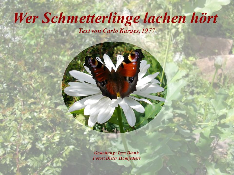 Wer Schmetterlinge lachen hört Text von Carlo Karges, 1977 Gestaltung: Jeca Blank Fotos: Dieter Hamjediers