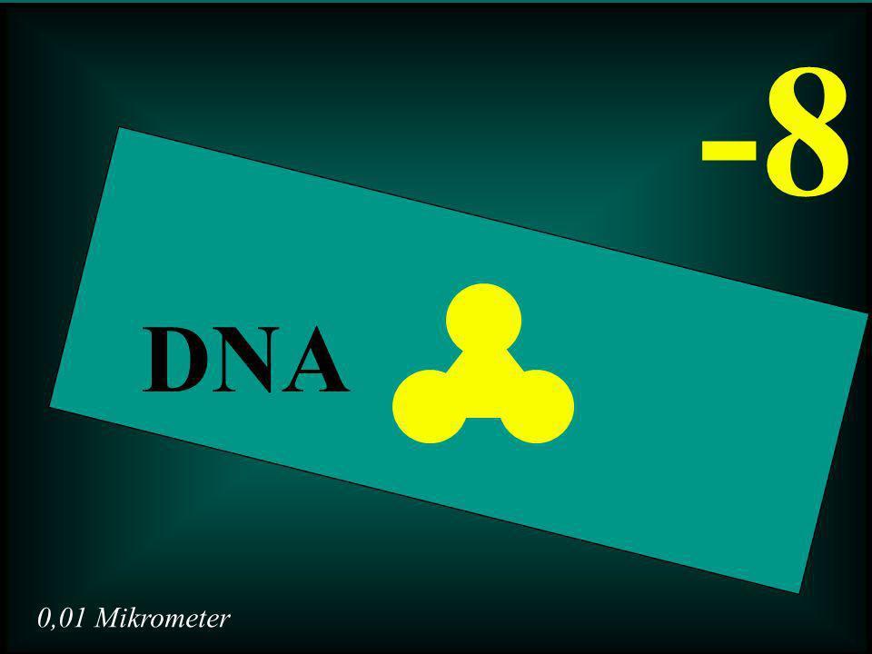 0,01 Mikrometer -8 DNA