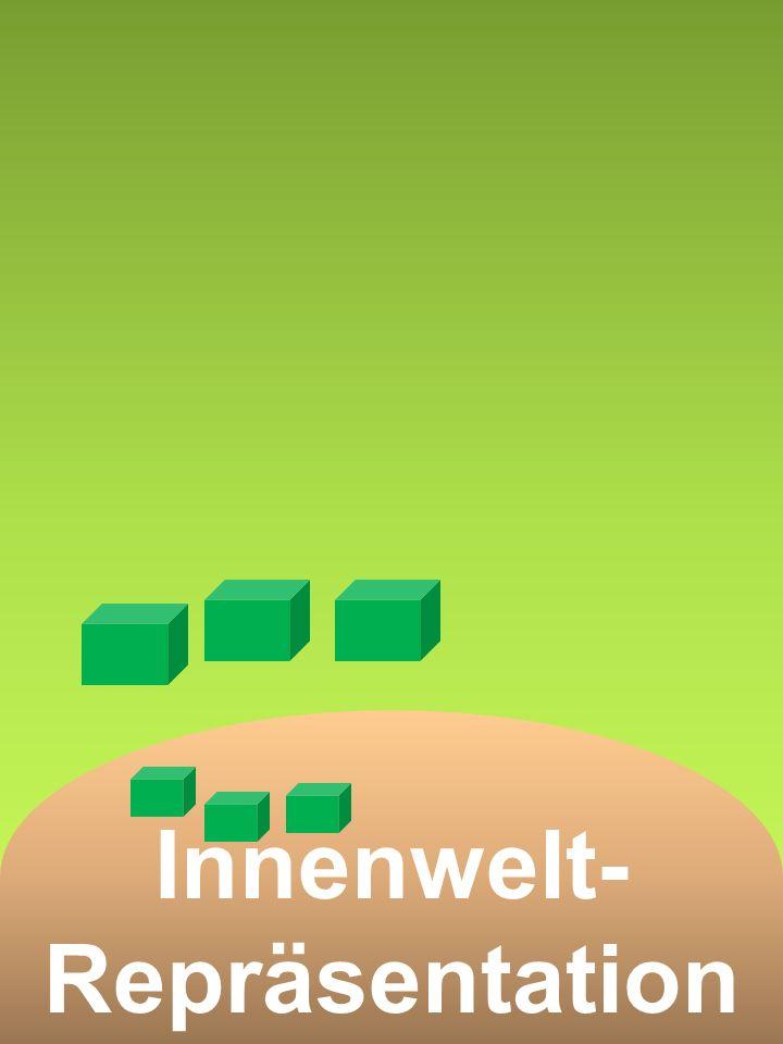 Innenwelt- Repräsentation