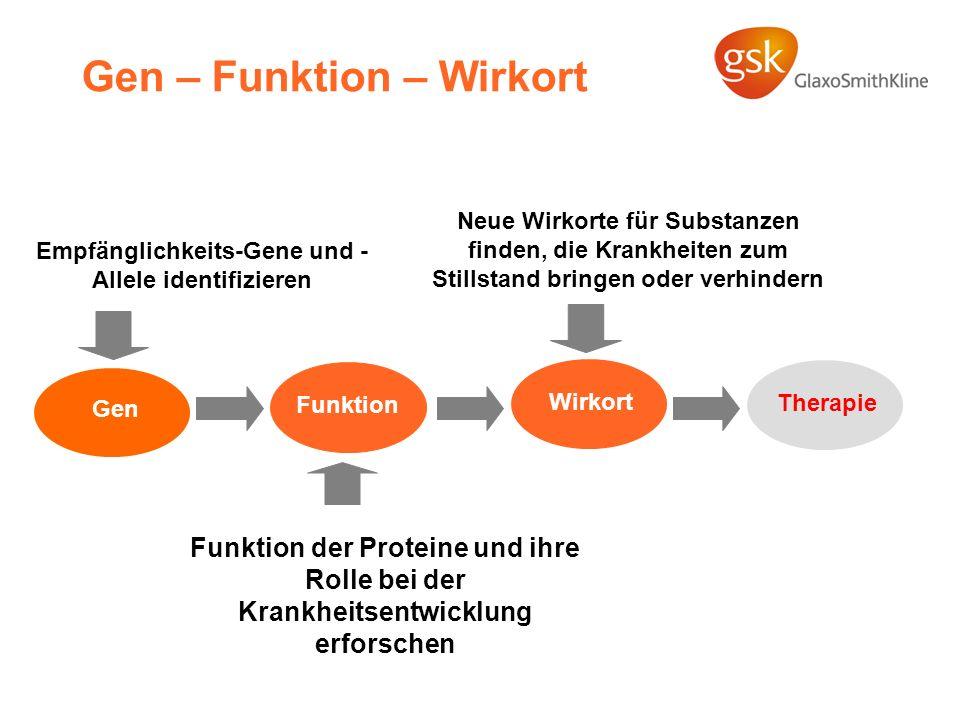Gen – Funktion – Wirkort Empfänglichkeits-Gene und - Allele identifizieren Funktion der Proteine und ihre Rolle bei der Krankheitsentwicklung erforsch