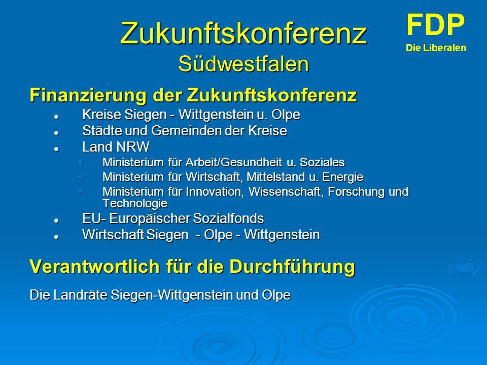 Zukunftskonferenz Südwestfalen Finanzierung der Zukunftskonferenz Kreise Siegen - Wittgenstein u.