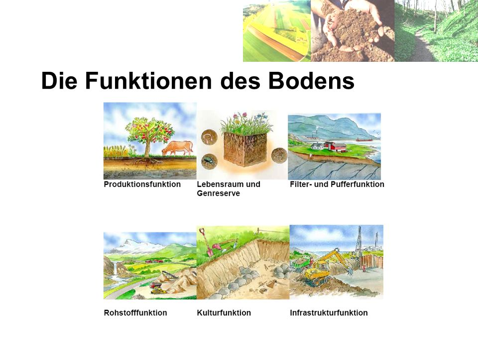 Die Funktionen des Bodens
