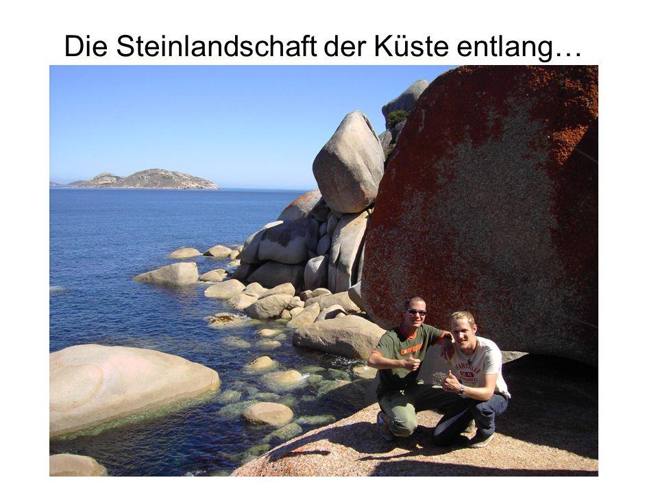 Die Steinlandschaft der Küste entlang…