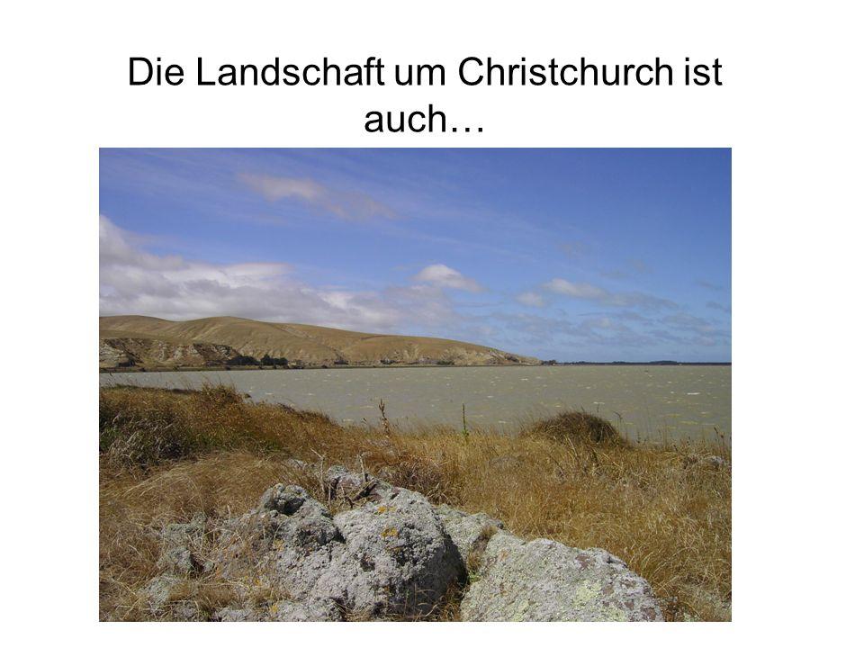 Die Landschaft um Christchurch ist auch…