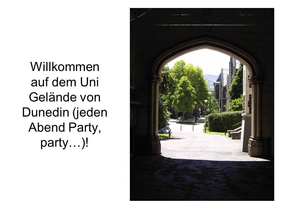 Willkommen auf dem Uni Gelände von Dunedin (jeden Abend Party, party…)!