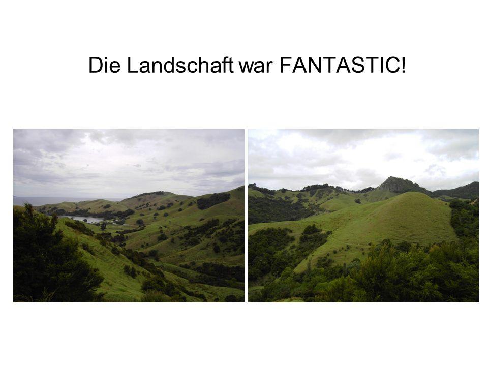 Die Landschaft war FANTASTIC!
