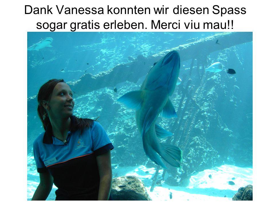 Dank Vanessa konnten wir diesen Spass sogar gratis erleben. Merci viu mau!!