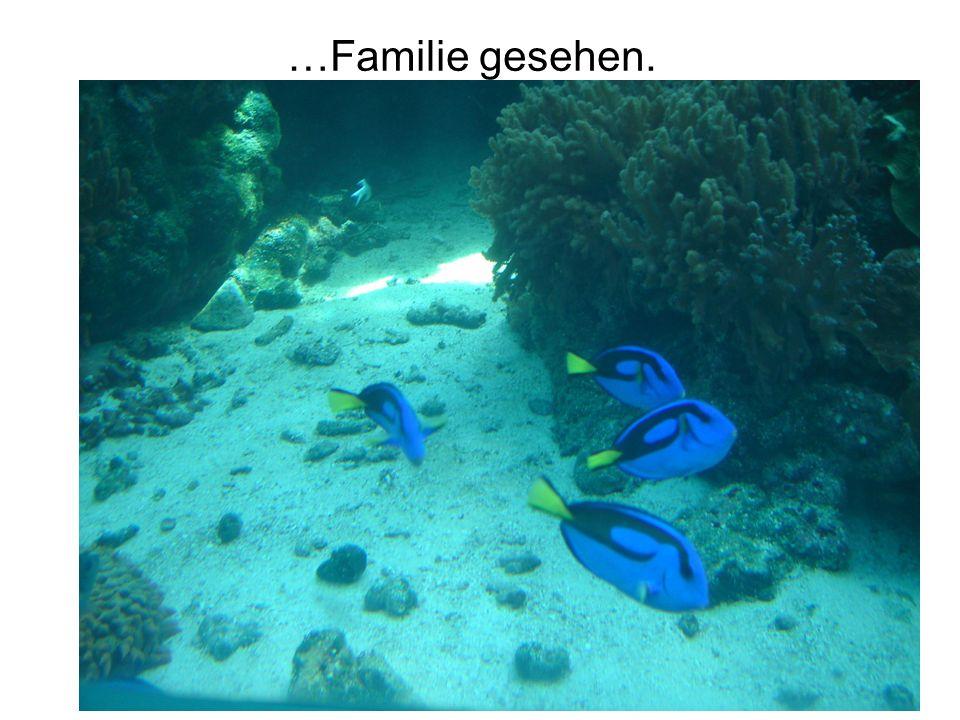 …Familie gesehen.