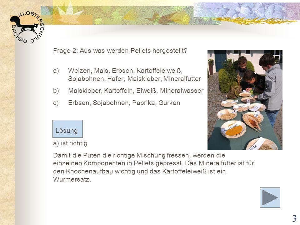 3 Frage 2: Aus was werden Pellets hergestellt? a)Weizen, Mais, Erbsen, Kartoffeleiweiß, Sojabohnen, Hafer, Maiskleber, Mineralfutter b)Maiskleber, Kar