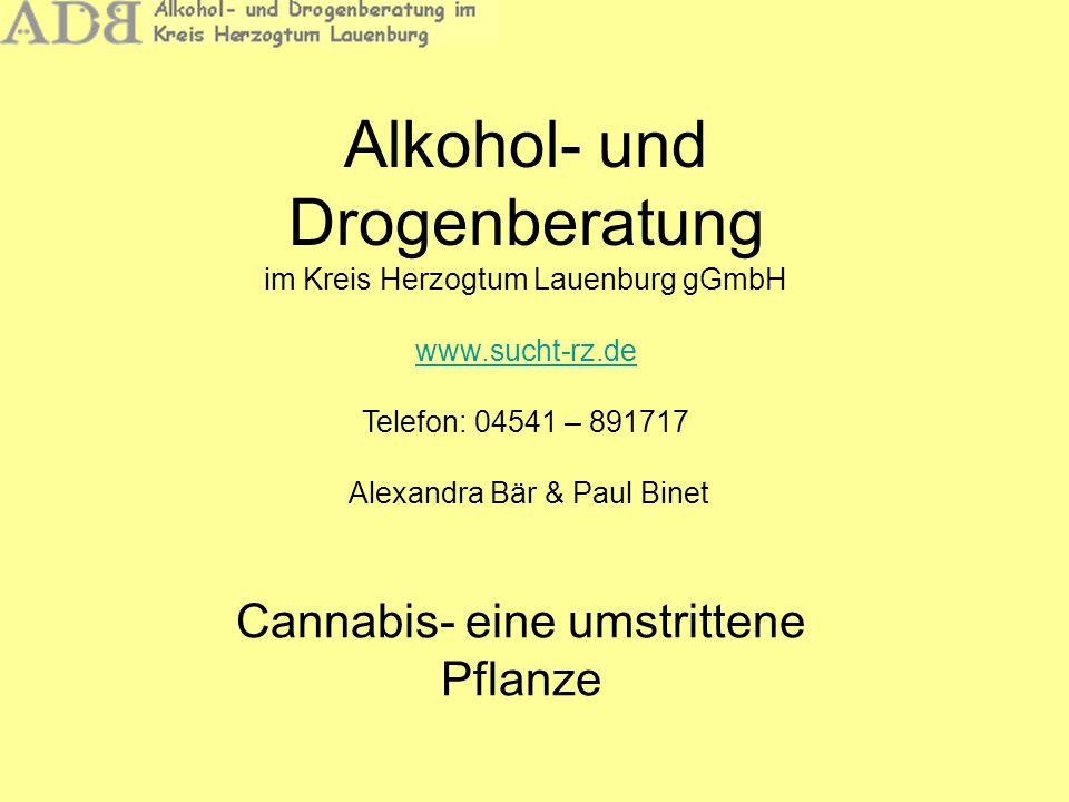 Alkohol- und Drogenberatung Cannabis – Eine umstrittene Pflanze Überblick –Cannabis und der Wirkstoff THC –Drei häufig gestellte Fragen –Aktuelle Entwicklungen