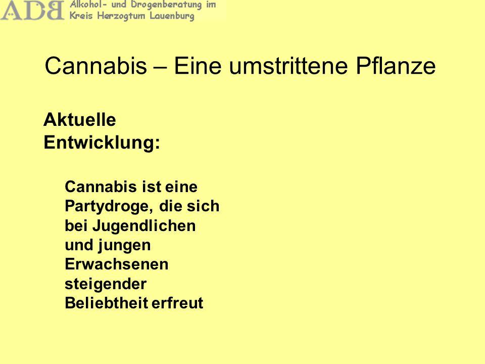 Cannabis – Eine umstrittene Pflanze Aktuelle Entwicklung: Cannabis ist eine Partydroge, die sich bei Jugendlichen und jungen Erwachsenen steigender Be
