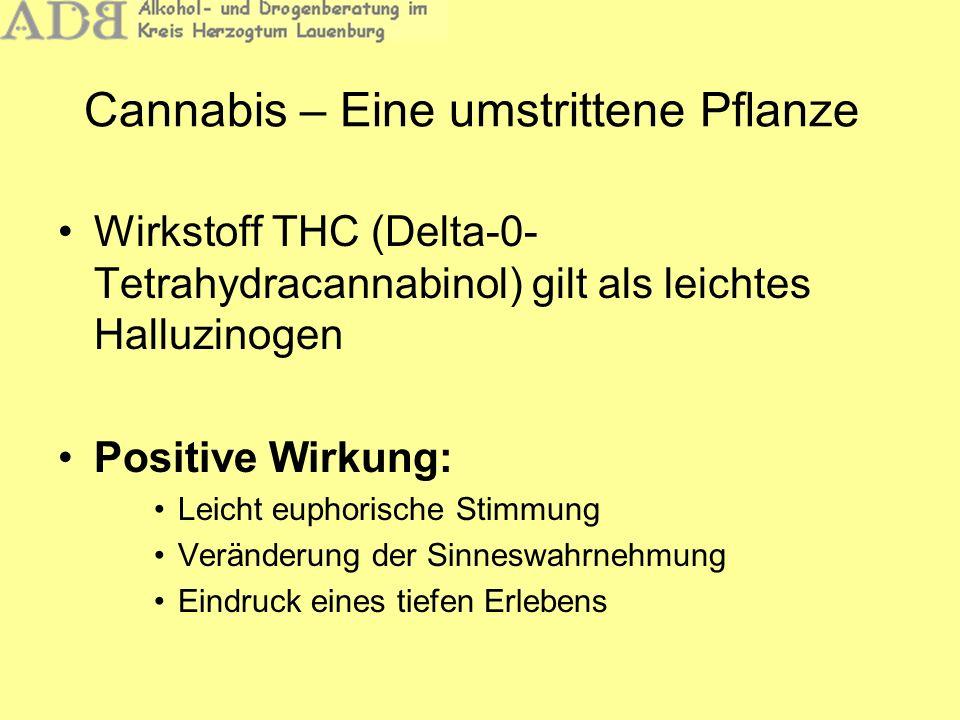 Cannabis – Eine umstrittene Pflanze Wirkstoff THC (Delta-0- Tetrahydracannabinol) gilt als leichtes Halluzinogen Positive Wirkung: Leicht euphorische