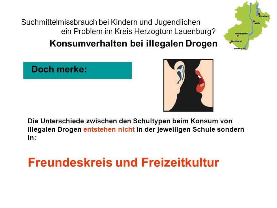 Suchmittelmissbrauch bei Kindern und Jugendlichen - ein Problem im Kreis Herzogtum Lauenburg? Doch merke: Konsumverhalten bei illegalen Drogen Die Unt