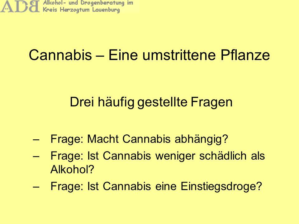 Cannabis – Eine umstrittene Pflanze Drei häufig gestellte Fragen –Frage: Macht Cannabis abhängig? –Frage: Ist Cannabis weniger schädlich als Alkohol?