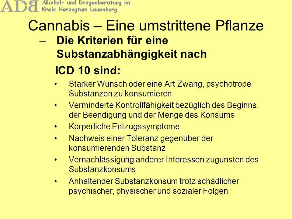 Cannabis – Eine umstrittene Pflanze –Cannabis kann psychisch abhängig machen: – Je jünger ein Konsument ist, desto größer ist das Risiko einer Abhängigkeit – Ausschlaggebend ist dann weniger ein Motiv wie Cannabis als Genussdroge einzusetzen, sondern vielmehr der Versuch, emotionale Defizite sowie eine unzureichende Konfliktbewältigung zu kompensieren – Eine Reifungsverzögerung ist dann die Folge –Ist Cannabis weniger schädlich als Alkohol?