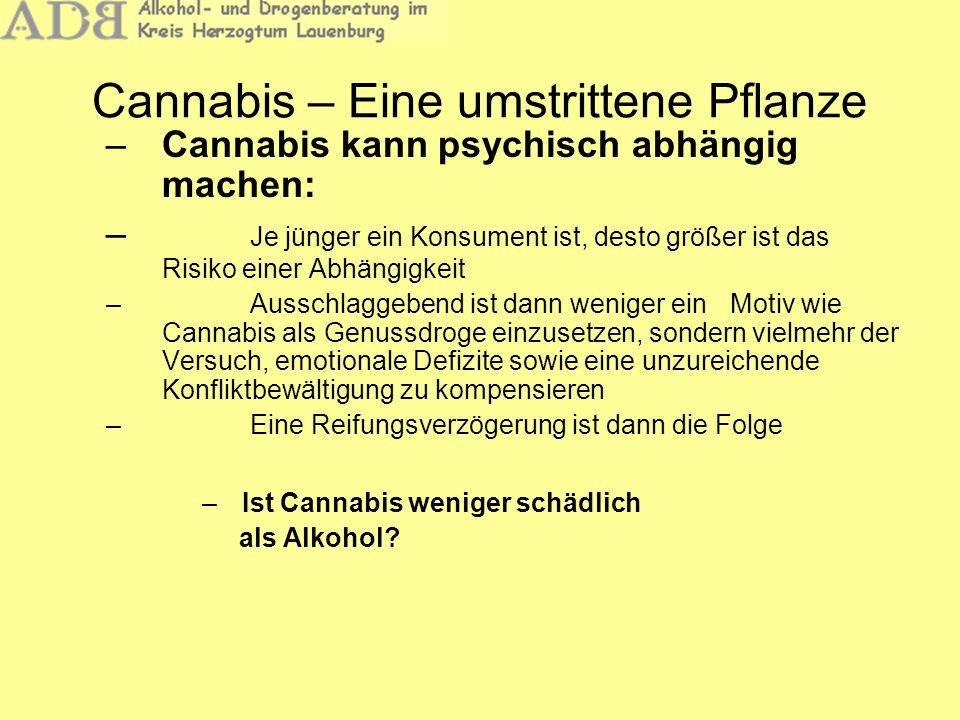 Cannabis – Eine umstrittene Pflanze Häufig vorgebrachte Argumente: Alkohol mache sowohl psychisch als auch körperlich abhängig Beim Alkoholrausch sterben viele Gehirnzellen ab Wenig bedacht wird oft: Alkohol wird mit 0,1 Promille pro Stunde abgebaut, beim THC beträgt die Halbwertzeit 5-7 Tage Beim Cannabis-Konsum kommt es zu einem Akkumulationseffekt