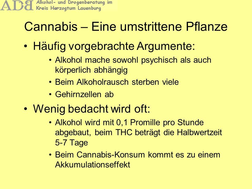 Cannabis – Eine umstrittene Pflanze Häufig vorgebrachte Argumente: Alkohol mache sowohl psychisch als auch körperlich abhängig Beim Alkoholrausch ster