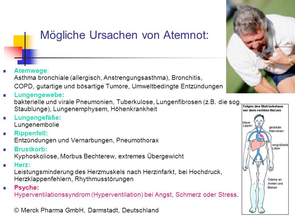 Mögliche Ursachen von Atemnot: Atemwege: Asthma bronchiale (allergisch, Anstrengungsasthma), Bronchitis, COPD, gutartige und bösartige Tumore, Umweltb