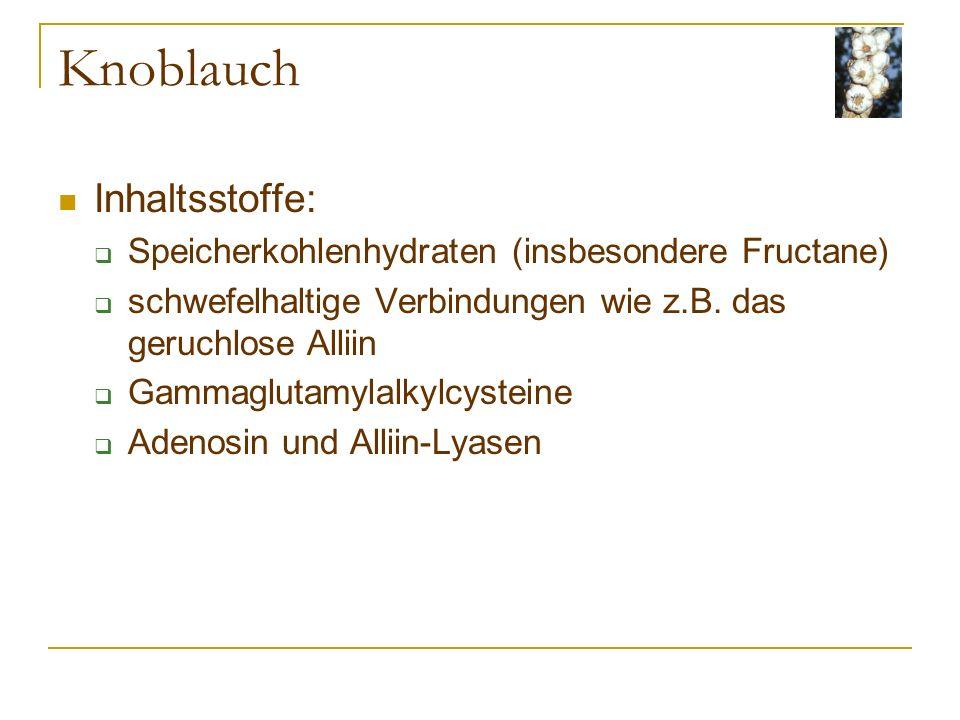 Knoblauch Inhaltsstoffe: Speicherkohlenhydraten (insbesondere Fructane) schwefelhaltige Verbindungen wie z.B.