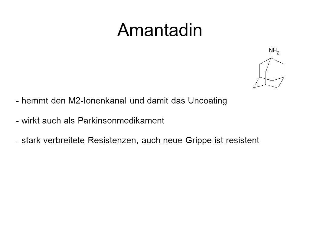 Amantadin - hemmt den M2-Ionenkanal und damit das Uncoating - wirkt auch als Parkinsonmedikament - stark verbreitete Resistenzen, auch neue Grippe ist