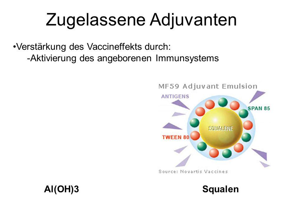 Zugelassene Adjuvanten SqualenAl(OH)3 Verstärkung des Vaccineffekts durch: -Aktivierung des angeborenen Immunsystems