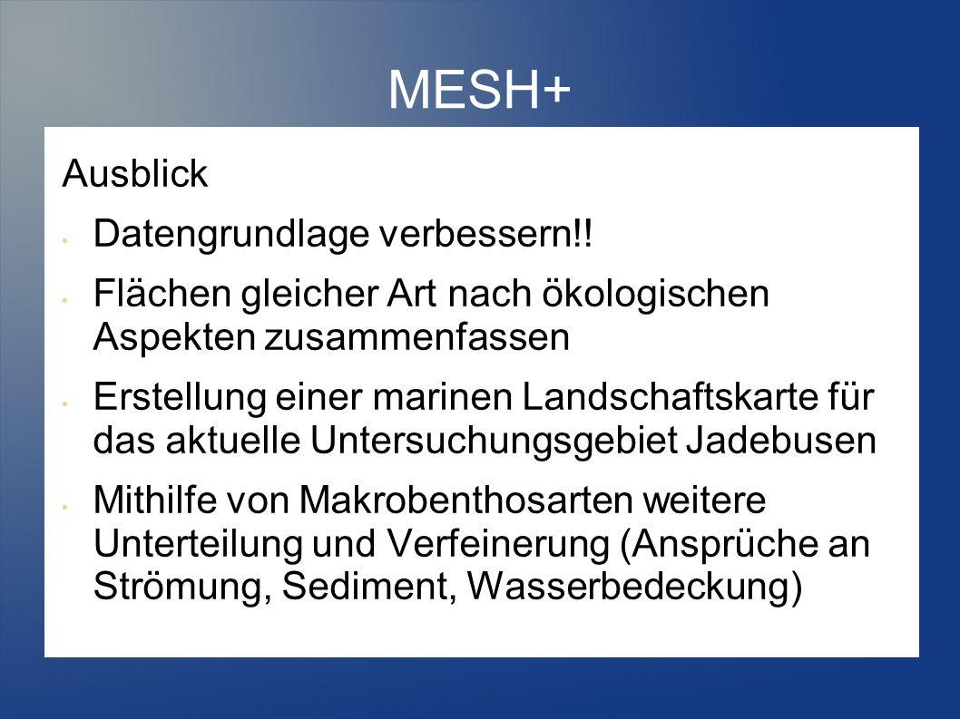 MESH+ Ausblick Datengrundlage verbessern!! Flächen gleicher Art nach ökologischen Aspekten zusammenfassen Erstellung einer marinen Landschaftskarte fü