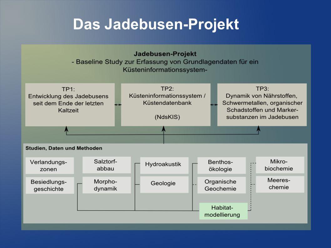 Das Jadebusen-Projekt