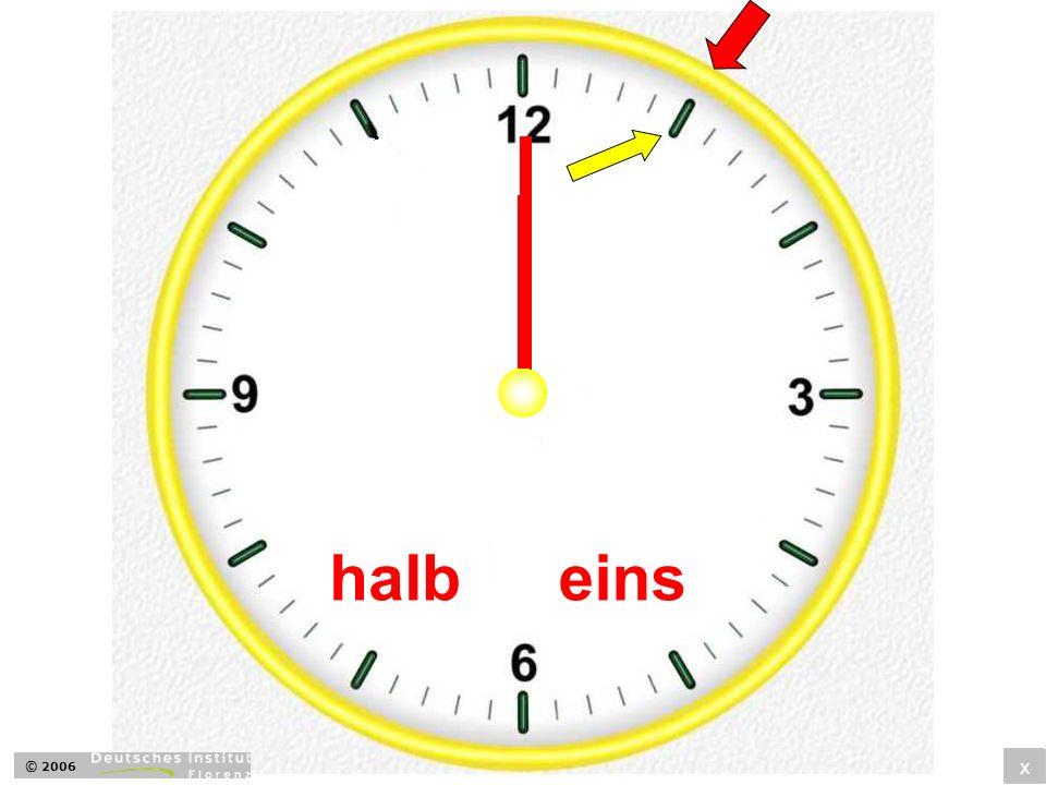 halbeins x