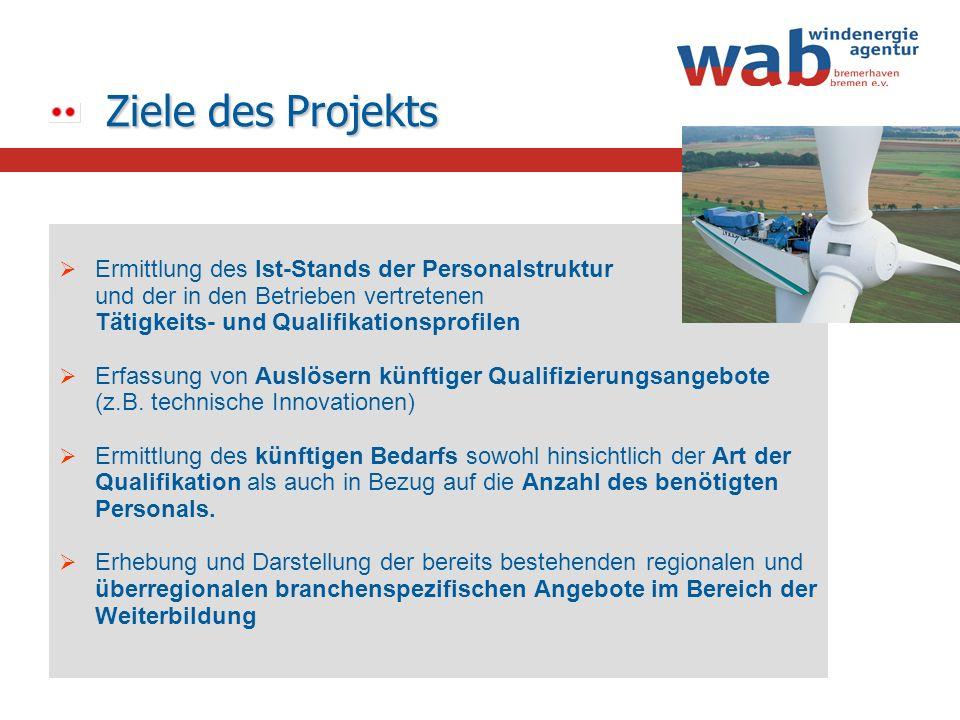 Ziele des Projekts Ermittlung des Ist-Stands der Personalstruktur und der in den Betrieben vertretenen Tätigkeits- und Qualifikationsprofilen Erfassun