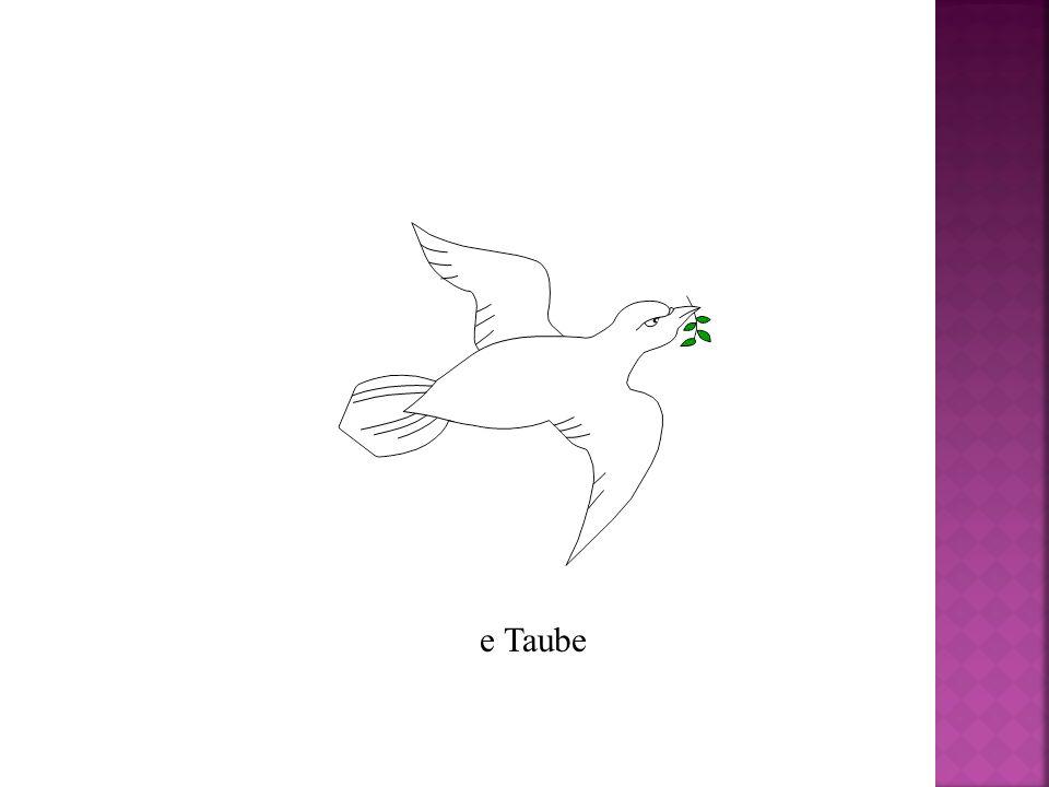 e Taube