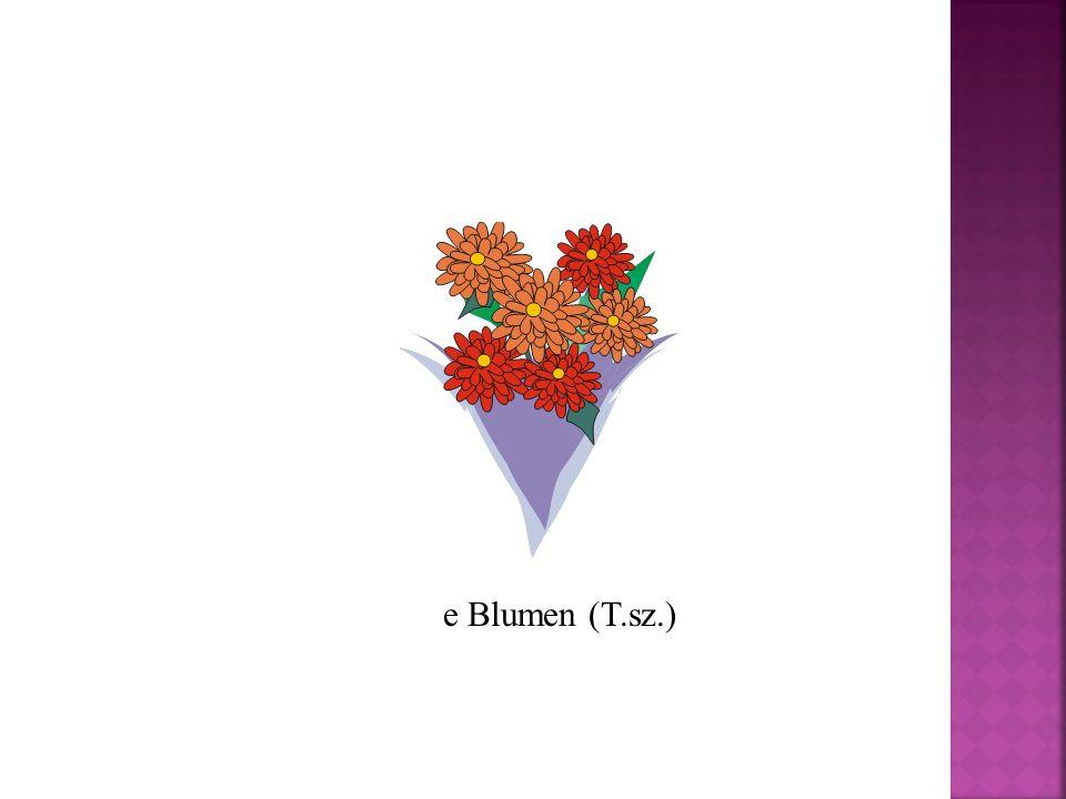 e Blumen (T.sz.)