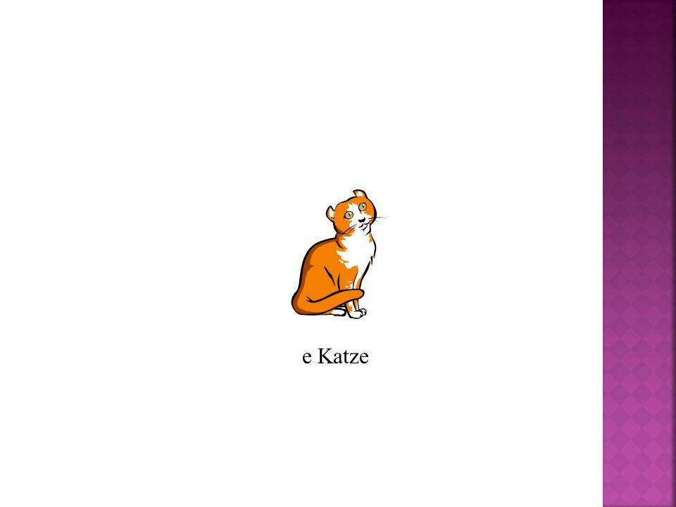 e Katze