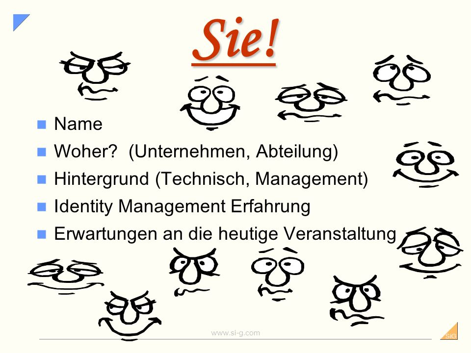 SiG www.si-g.com SiG - Wandel durch Informatik Informationssicherheit Sicherheitsgrundsätze, Sicherheits- analysen, Sicherheitsmanagement, Security Aw