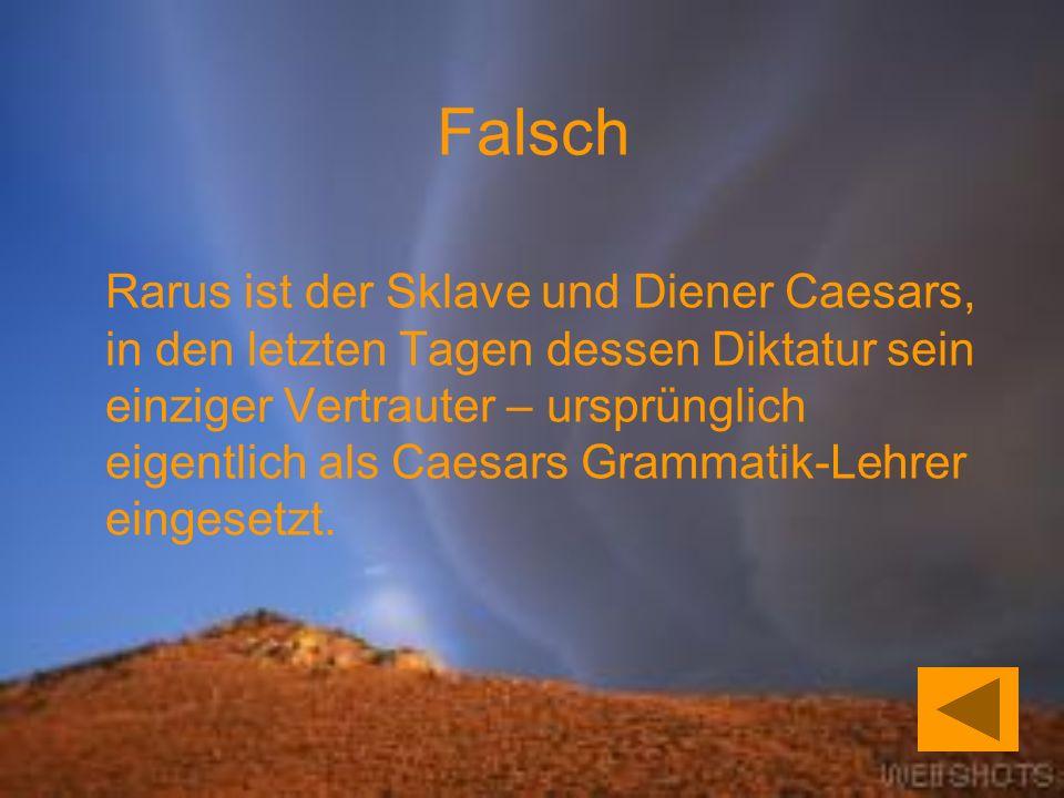 Rarus ist der Sklave und Diener Caesars, in den letzten Tagen dessen Diktatur sein einziger Vertrauter – ursprünglich eigentlich als Caesars Grammatik-Lehrer eingesetzt.