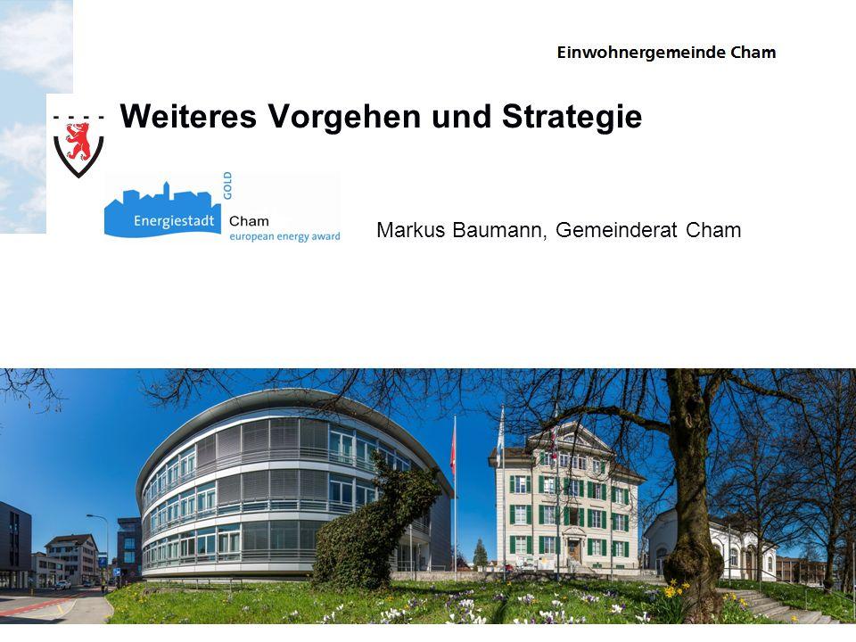 Weiteres Vorgehen und Strategie Markus Baumann, Gemeinderat Cham