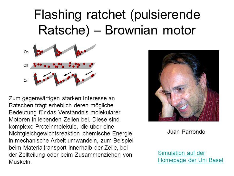 Flashing ratchet (pulsierende Ratsche) – Brownian motor Juan Parrondo Zum gegenwärtigen starken Interesse an Ratschen trägt erheblich deren mögliche B